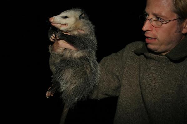 Possum0818